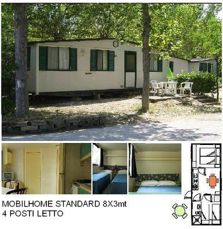 Paradise: mobilhome standard