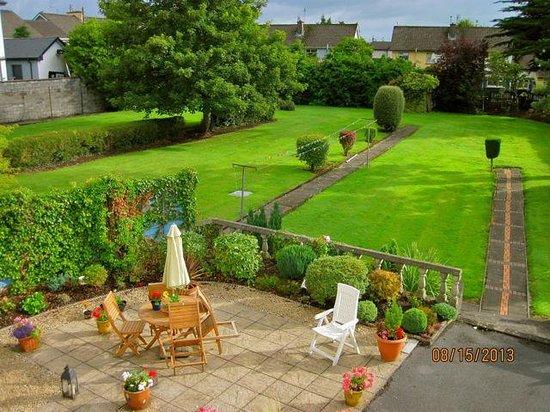 Glenomra House back yard- European robins!
