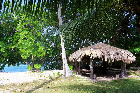 Chalets d'Anse Forbans: jardin vue de la terrasse