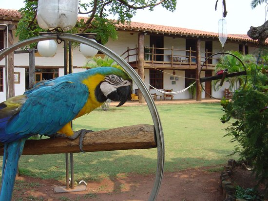 Hotel Chiquitos: Hay tres bellas parabas
