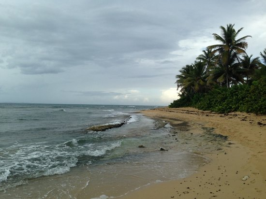 At the Waves: Green Beach - Incredible snorkeling here!