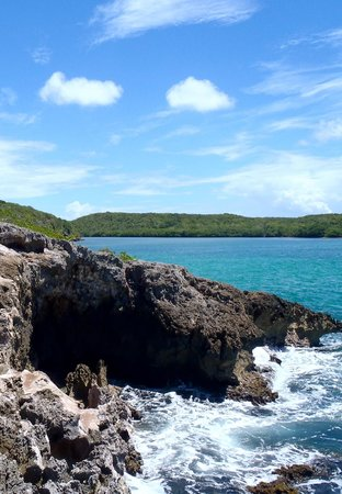 At the Waves: hiked a small cliff east at Navio, jumped in and snorkeled around it! Great time!