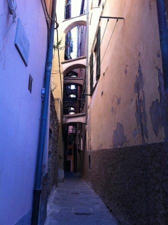 Monica Lercari Rooms : Steps