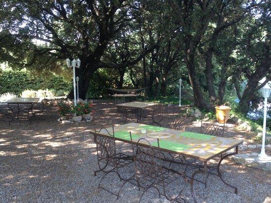 La Vieille Bastide : Sous les chênes verts