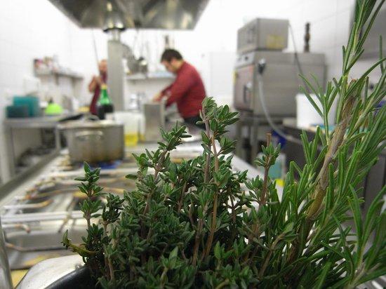 frische kräuter - frische küche - picture of schwarzer bock ... - Frische Kräuter In Der Küche