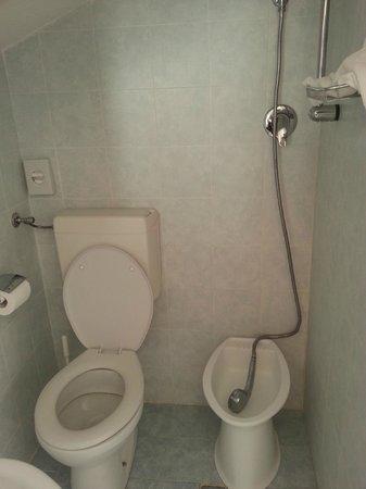 Hotel Adriatico: bidet trasportabile, con doccia integrata