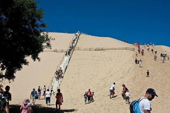 Domaine du Mayne: Arcachon: Dune du pyla