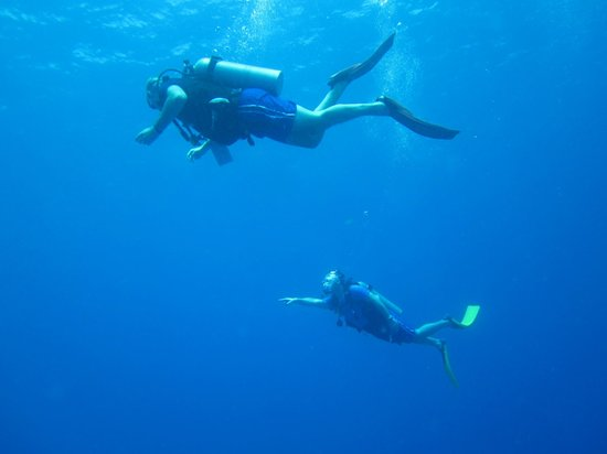 Bahia Divers: BUZOS