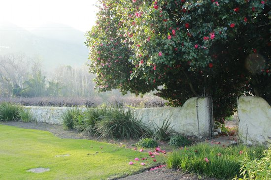 Die Eike: Wall between the garden and vineyards