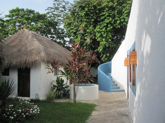 Tamarindo Bed and Breakfast: courtyard