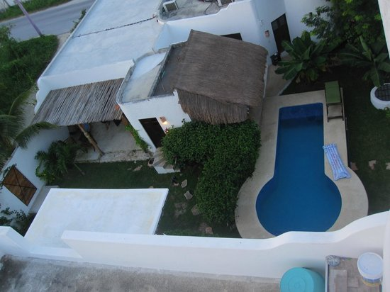 Tamarindo Bed and Breakfast: pool