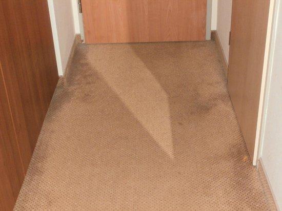 Hunguest Hotel Bal Resort: carpet