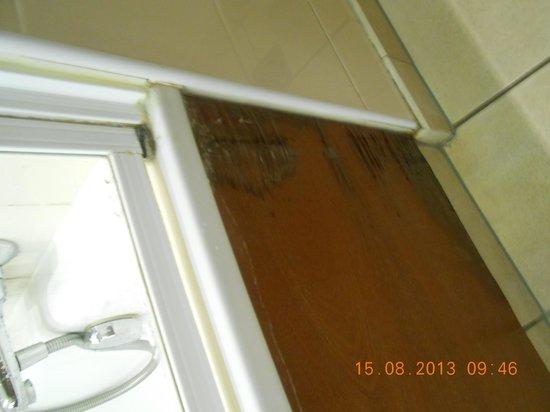 Radisson Blu Hotel, Athlone: bathroom wear and tear
