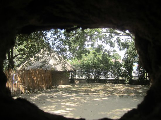 Village Museum : A view of one of the huts