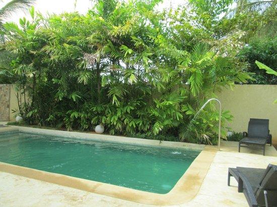Posada Libert Hotel : piscina!! agua muy rica!