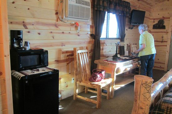 Frontier Cabins Motel: adequate and nicely appointed - note large frig & microwave!