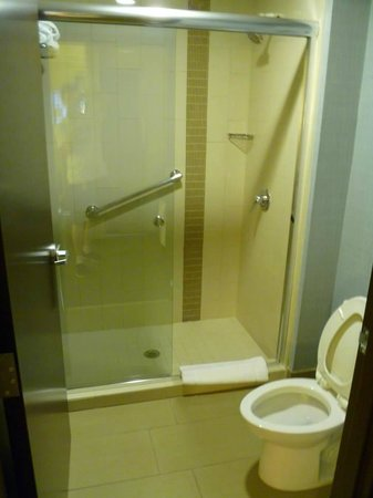 Hyatt Place Corpus Christi: Shower/Toilet