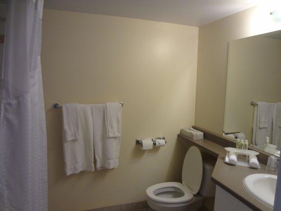 Hotel Faubourg Montreal: Vista do banheiro