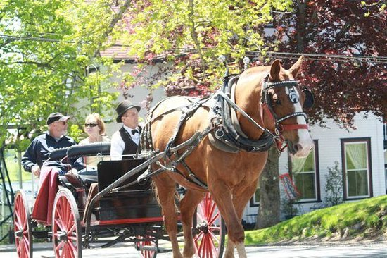 Boscawen Inn: The horse and buggy goes right past our hotel