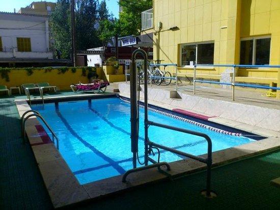 Hotel Amic Gala: Tiny pool