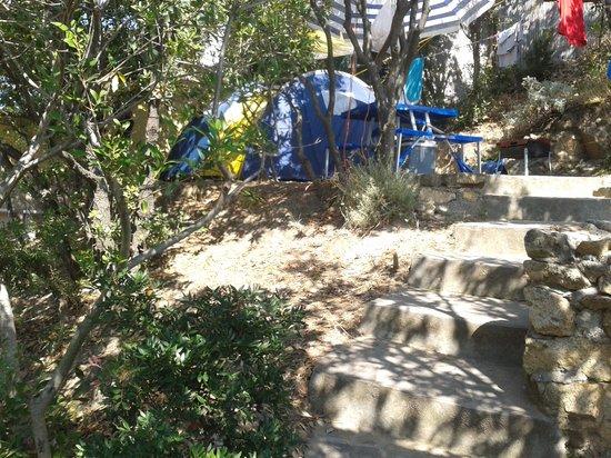 Camping Enfola: camping