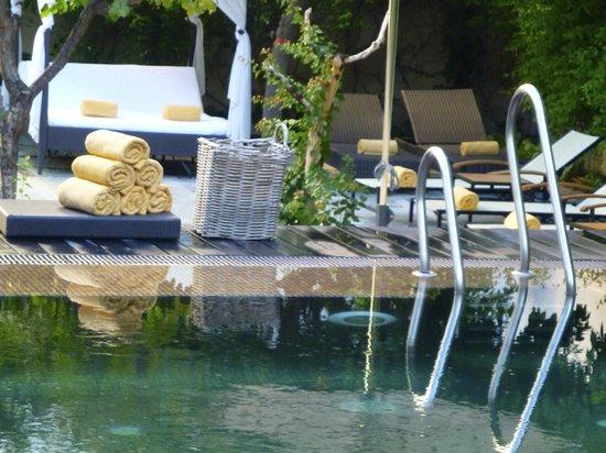 Hospes Palacio del Bailio: Pool område