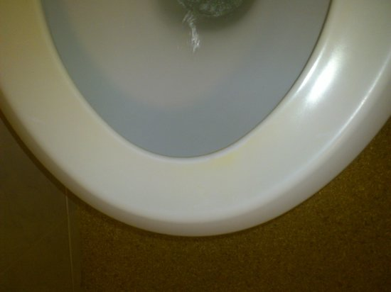 Premier Inn Manchester (Hyde) Hotel: yellow stained toliet seat