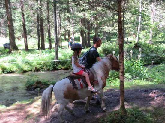 Le Paradis des Praz : Pony rides through the forest