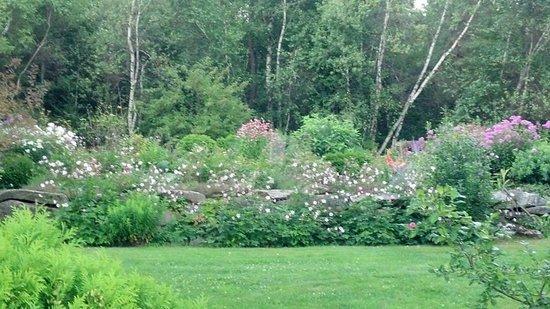 Perennial garden at Dream Away Lodge