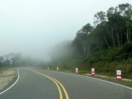 Bokor National Park : la route dans les nuages