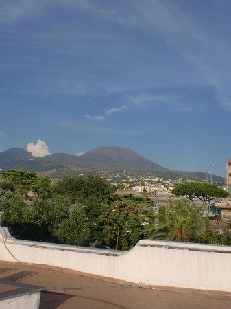 Villa San Gennariello b&b : View from rooftop