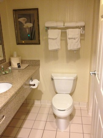 GrandStay Hotel & Suites Appleton-Fox River Mall: Bath