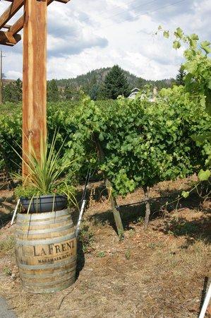La Frenz Winery : Cute walkway