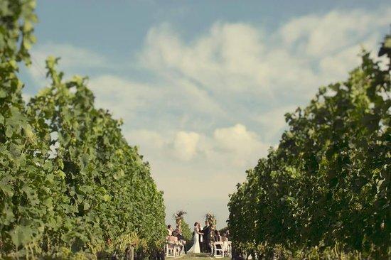 Shinn Estate Farmhouse : Wedding