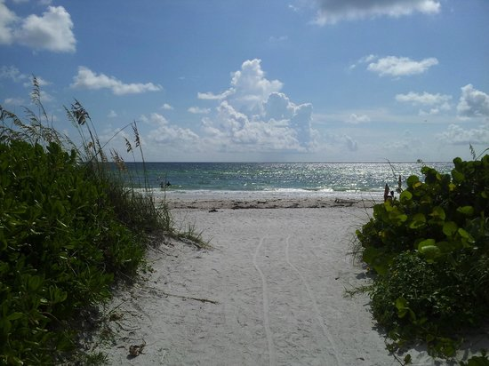 Tortuga Beach Resort: the beach