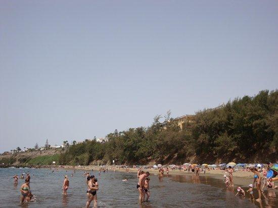 Beverly Park Hotel: Praia