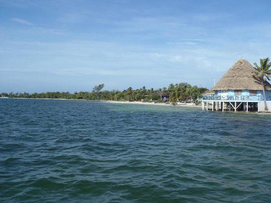 Blackbird Caye Resort : As our boat departed we were looking back at the bar area: Tiki area on right of picture.