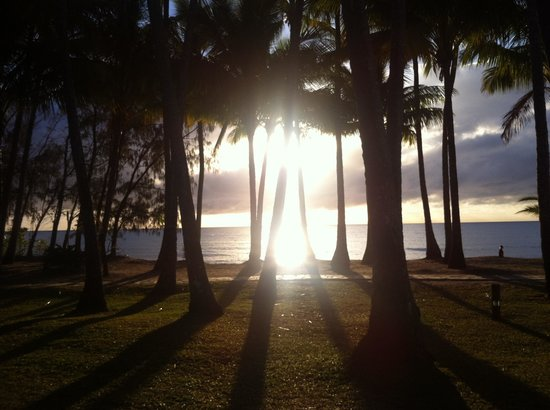 Oasis at Palm Cove: Palm Cove beach in the morning (a little walk away)