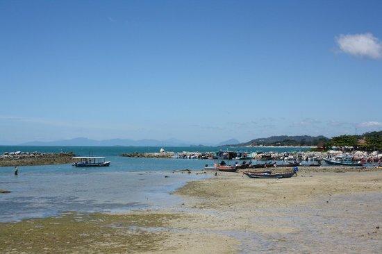 Samaya Bura : spiaggia