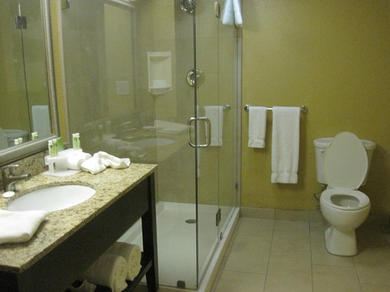 Holiday Inn Express and Suites Fort Lauderdale Executive Airport: Bathroom