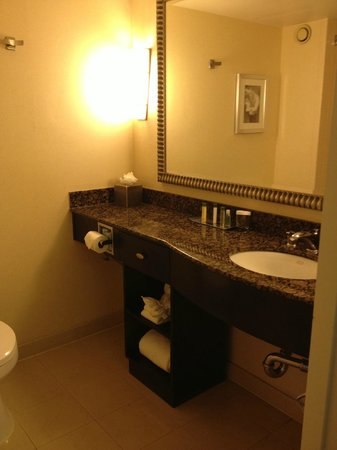 DoubleTree Club by Hilton Orange County Airport: Standard king bathroom