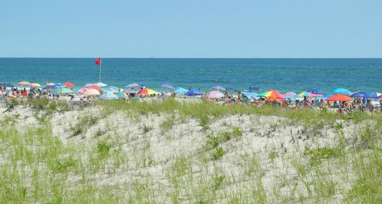 Westhampton Beach, Нью-Йорк: Busy day at the beach