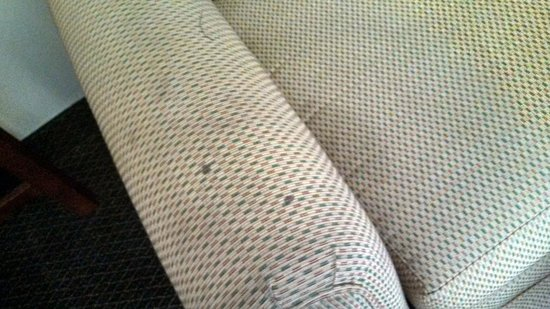Comfort Suites Innsbrook: stained furniture