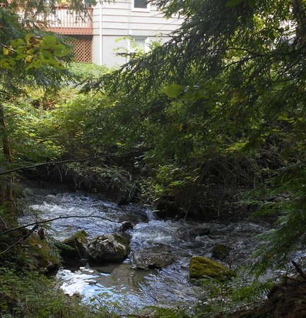 Berkshire Hills Country Inn: Stream flowing beside the motel