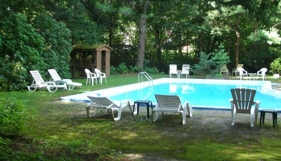 Berkshire Hills Country Inn : Pool area, amidst the woods