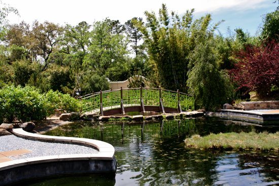 Japanese Gardens at the Zoo - Picture of Jacksonville Zoo & Gardens ...