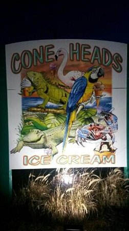 Cone Heads Ice Cream: Coneheads Icecream St Aug,Fl