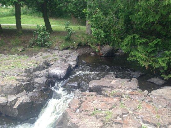 McVicar Manor Bed and Breakfast: Creek in garden area