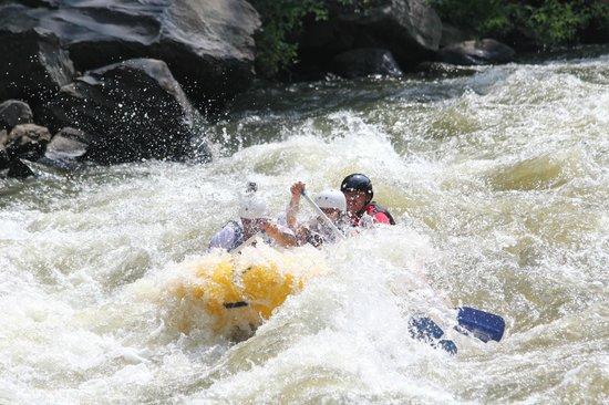 River Rat Whitewater: Rafting