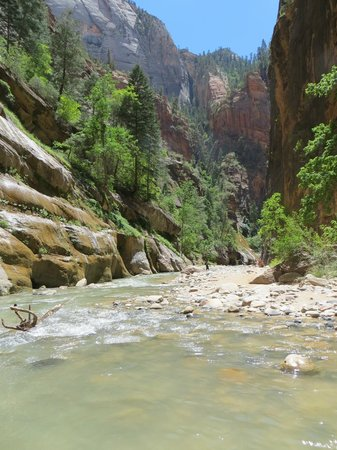 Zion Outfitter: Hiking the Narrows